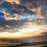 """""""What a Blessed Morning at the Beach"""" by 1blessedmom"""
