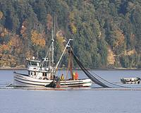 New Oregon - Purse Seiner