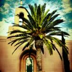 """Newport Temple Palm Color"" by LDSTempleArt"