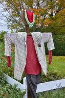 The Most Fashionable Scarecrow