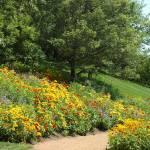 """""""Wildflower path"""" by MRLance"""