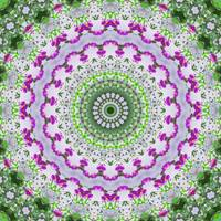 Purple Wildflower Kaleidoscope Art 4