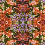 """""""fantasy flowers"""" by poetryoflight"""