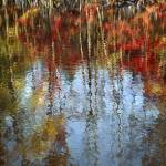 """Autumn Reflection On Water"" by DMHImages"