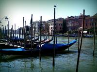 Gondolas in a row