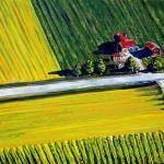 """Temecula Farm Road"" by MitchellMcClenney"