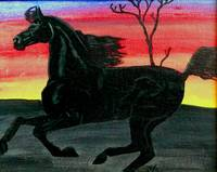 dark horse at sunset 1996