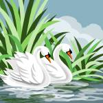 """Mute Swan Painting"" by waterart"