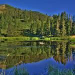 """""""Farmington Pond"""" by Spoiler"""