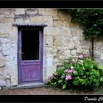 """Purple Door"" by DavideCherubini"