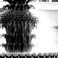 Fountain, Charleston, South Carolina.