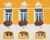 Windows On A Gold Wall