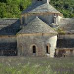 """""""Lavender at the Abbey de Sénanque"""" by travelingmcmahans"""