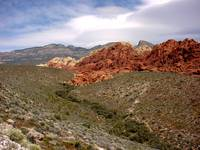 Red Rock Canyon18