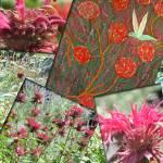 """Hummingbird & Bee balm"" by MichaelKarasik"