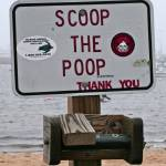 """scoop the poop"" by jkwebb2009"
