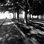 """""""park.gif"""" by jkwebb2009"""
