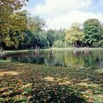 """""""17Vondel Park"""" by PriscillaTurner"""