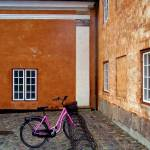"""The Pink Bicycle"" by picrad"