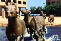 Dallas Horse Sculpture Closeup