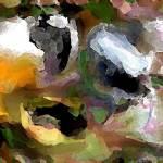 """""""framers"""" by dansankowsky"""