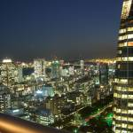 """Night view from Atago Tower on the Tokyo Bay"" by rein"