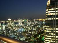Night view from Atago Tower on the Tokyo Bay