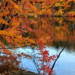 """Foliage Lake"" by funkydive"