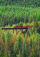 BNSF Train in Oregon