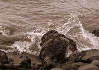 Sepia Seascapes