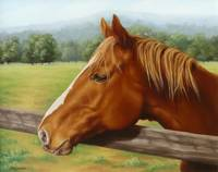 The Chestnut Mare