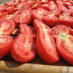 """""""pomodori al sole"""" by volpe_dacqua"""