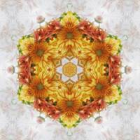 Gold Chrysanthemum Kaleidoscope Art 2