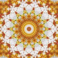 Gold Chrysanthemum Kaleidoscope Art 3