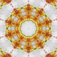 Gold Chrysanthemum Kaleidoscope Art 4