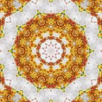 Gold Chrysanthemum Kaleidoscope Art 5