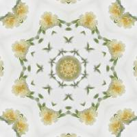 Creamy Yellow Rose Kaleidoscope Art 4