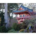 """japanes garden - Golden Gate Park"" by Dominique-Palombieri"