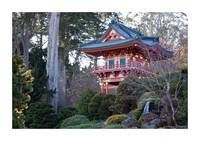 japanes garden - Golden Gate Park