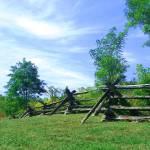 """""""Plank Fence"""" by gdavidchafin"""