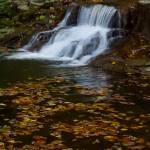 """Fall Creek Gorge Waterfall (IMG_8814)"" by jvandyke"
