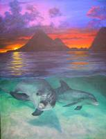 Dolphin Sunset-St Lucia
