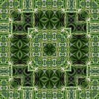 Spider Plant Kaleidoscope Art 2
