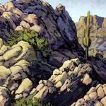 """""""Desert Saguaro"""" by RICKKERSTEN"""