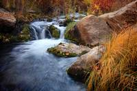 Autumn Stream 2