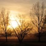 """""""Sunset"""" by MoisesVega"""
