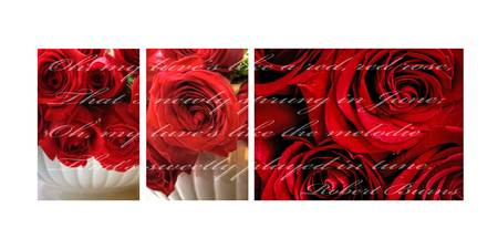 My Luv's Like a Red Red Rose...10x20 Storyboard