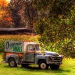 """organic vegies hdr"" by wofawarrior"