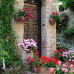 """Flowered Montechiello Door"" by DonnaCorless"