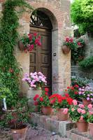 Flowered Montechiello Door